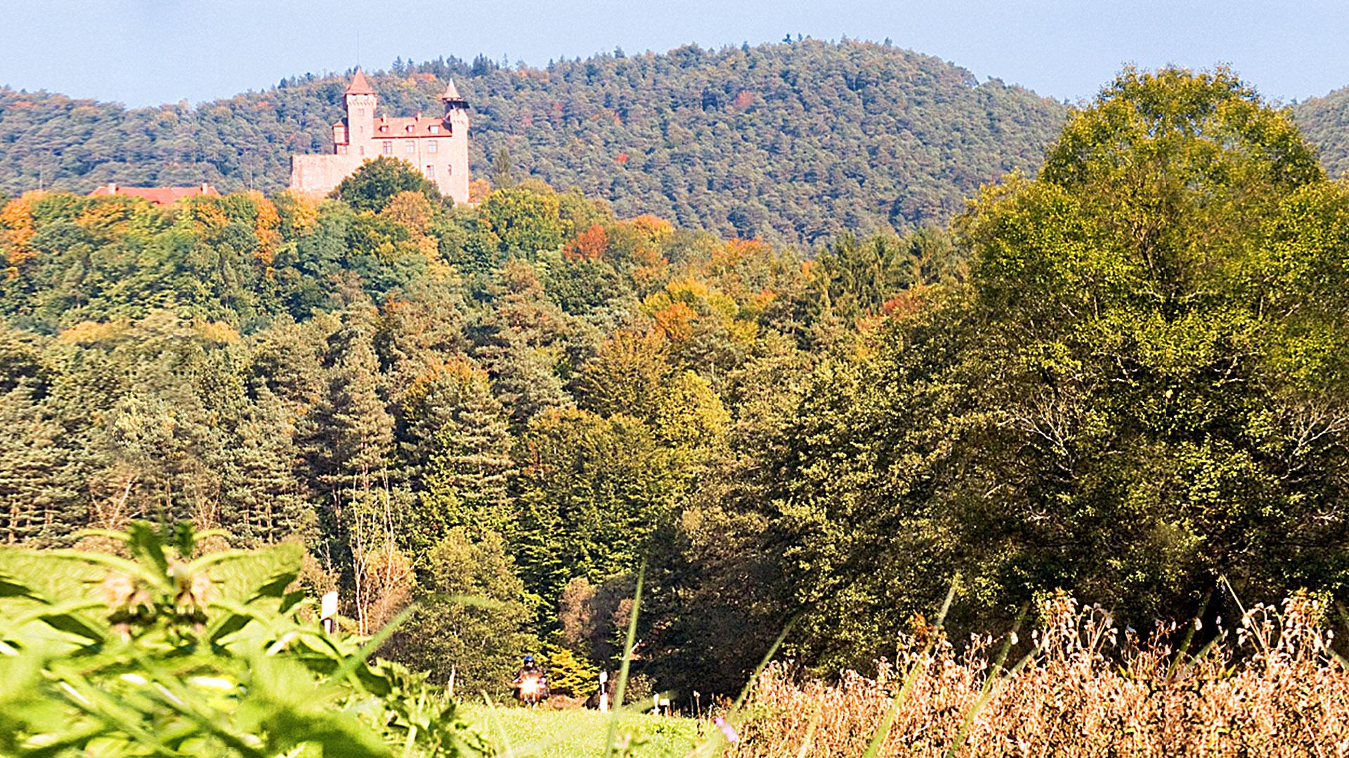 Pfalz und Pfälzer Wald