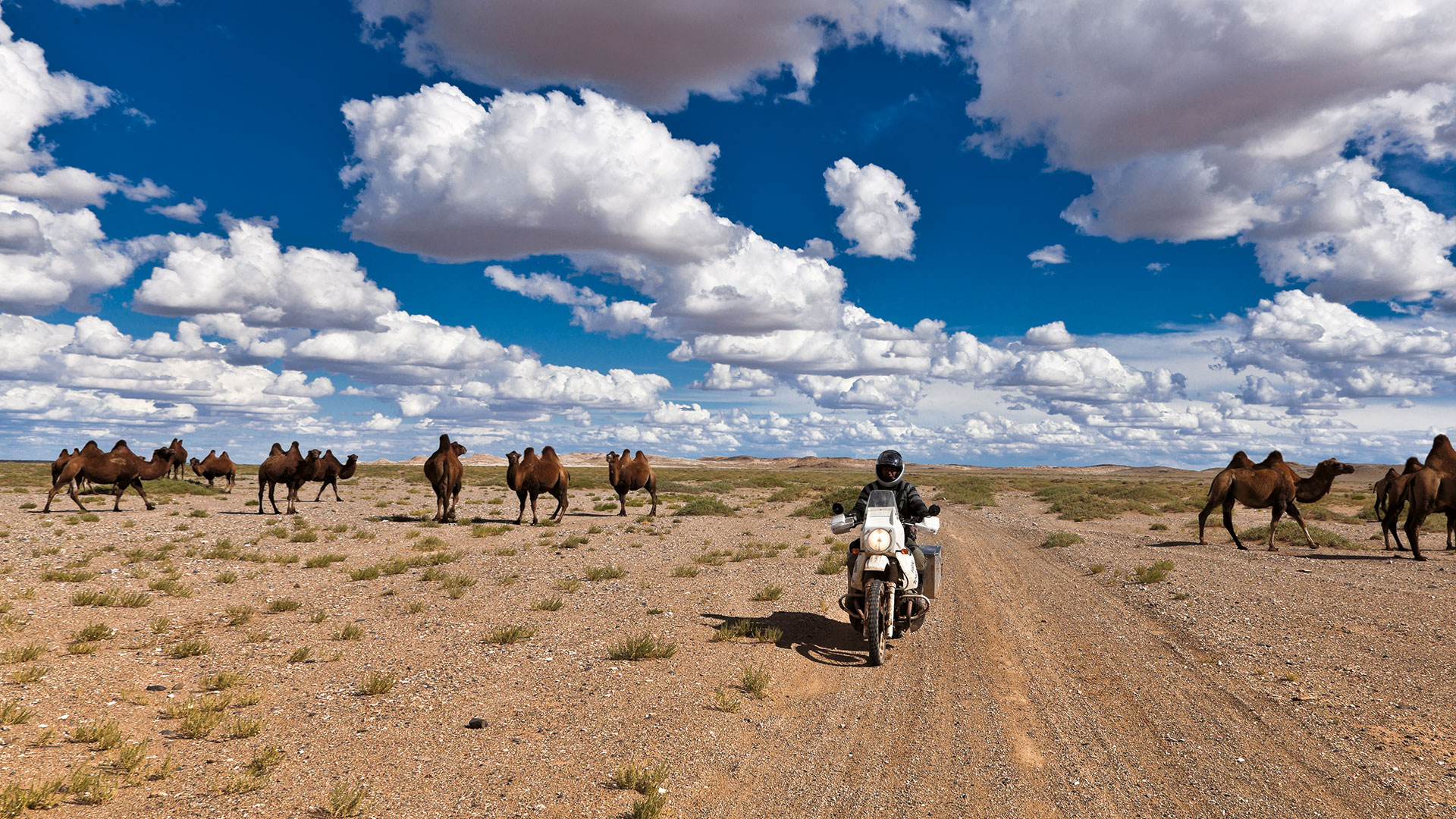 Nomaden im Sattel