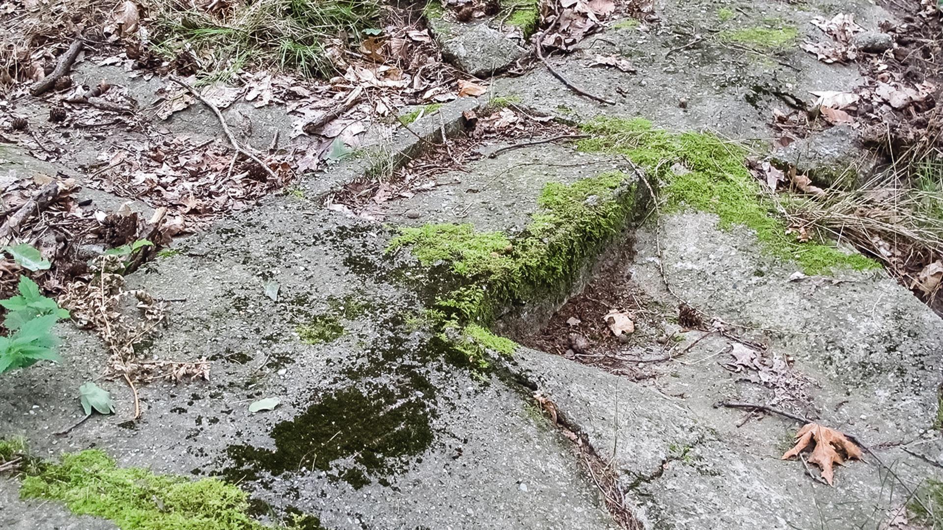 Strecken-Geflüster