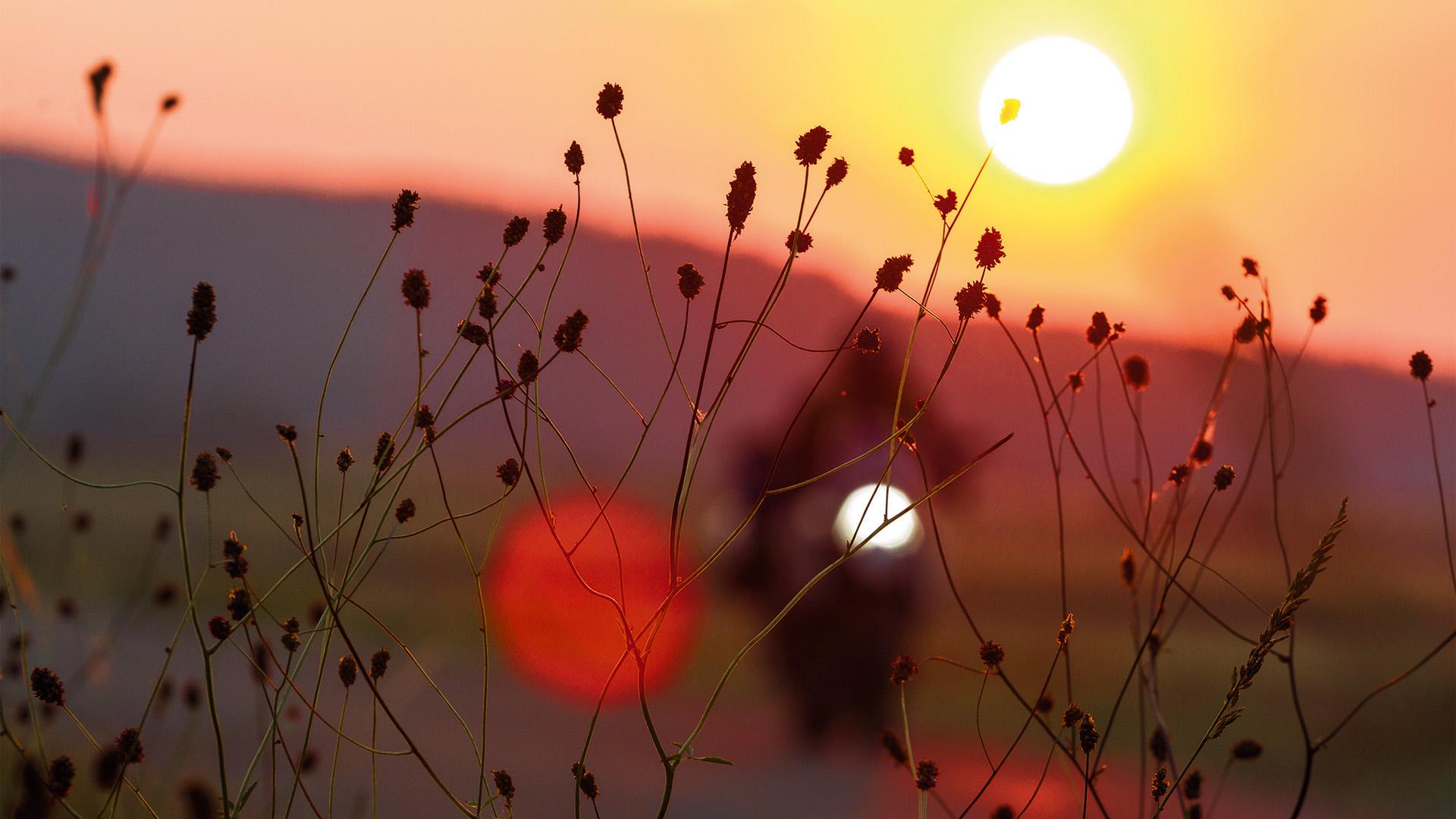 Fränkisches Sonnenbad