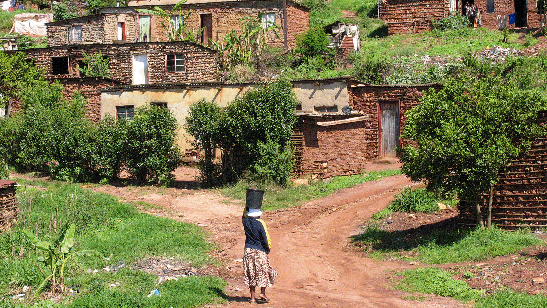 Willkommen in Shakas Land